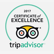 Trip Advisor 2017 Certificate of Excellence logo