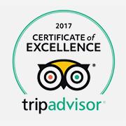 Trip Advisor 2017 Certificate of Excellence logo